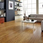 Bamboo Flooring – Alternative Hardwood Flooring