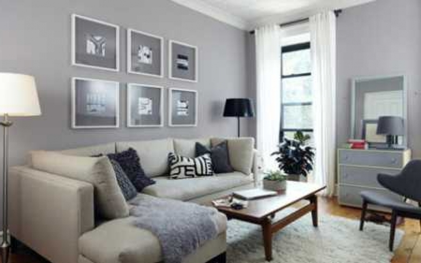 Cosy Living Room Color Ideas For Grey Furniture, Couch And Wall Images