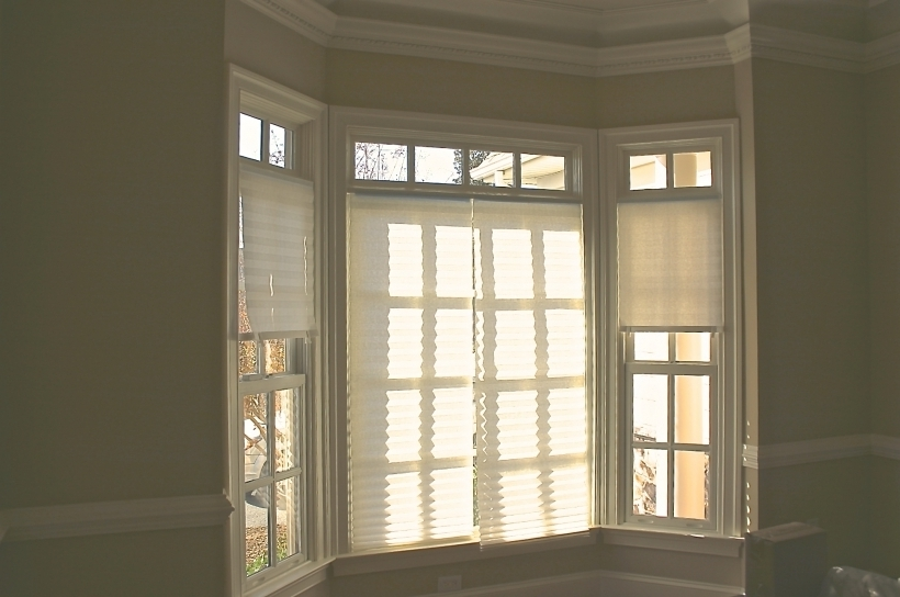Excellent French Doors With Transom Beveled Glass Windows Treatments Photos