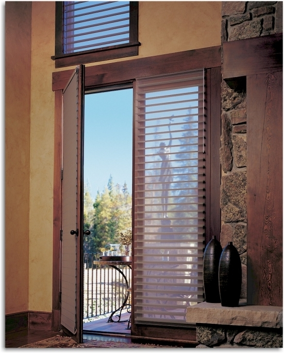 Lovely Sidelight Blinds Silhouette Window Shadings Images