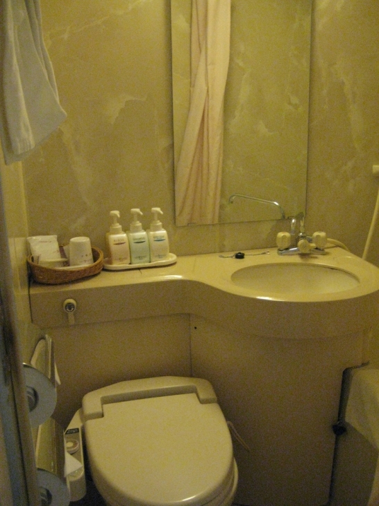 Toilet Sink Combo With Hotel Style Picture