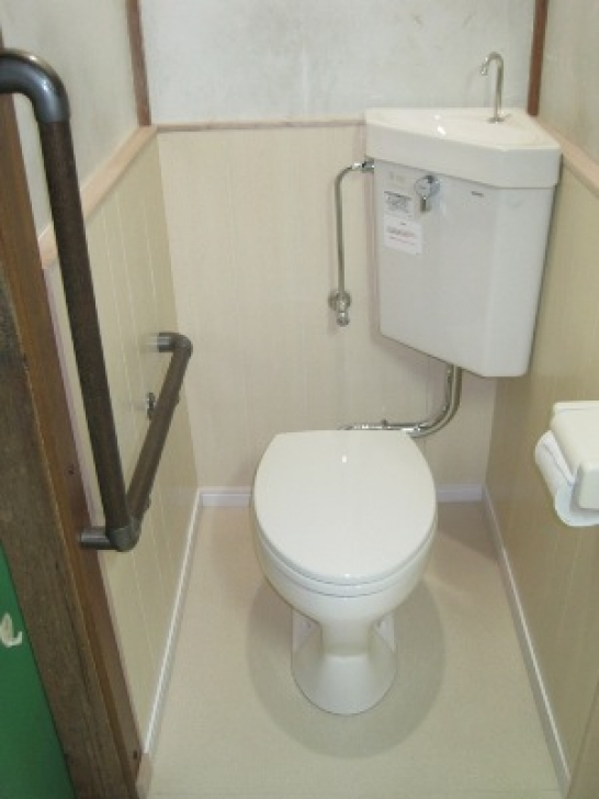 Toilet sink combo with bathroom installation combined for Toilet and sink combo