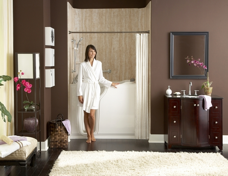 Walk In Tubs And Showers With Accessibility Bathtubs And Showers Image