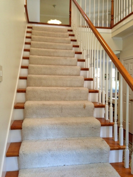Hardwood Stairs Carpet Runner Inspiration Picture 776