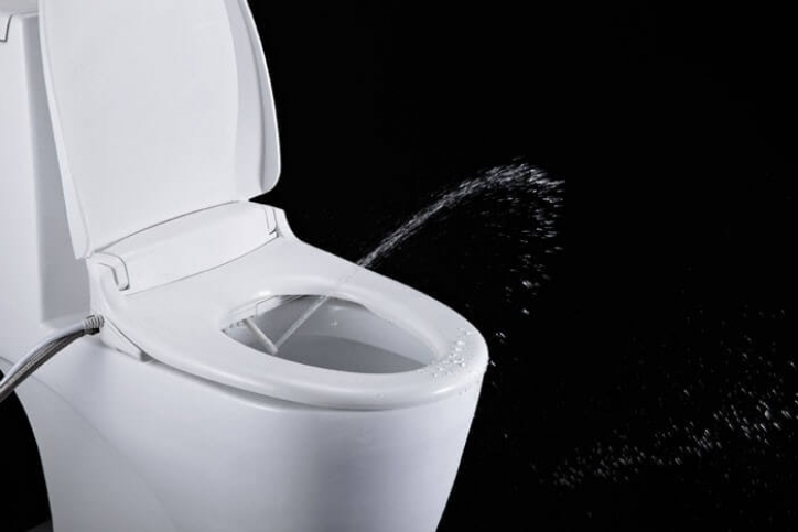 Bidet Toilet Seat More Efficient Than Toilet Paper Metaefficient Image