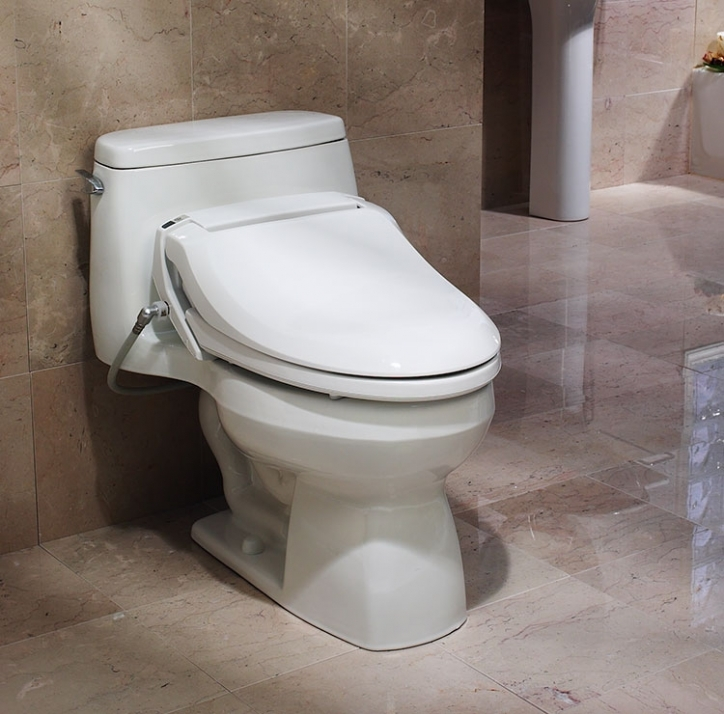 Bidet Toilet Seat Type Photo