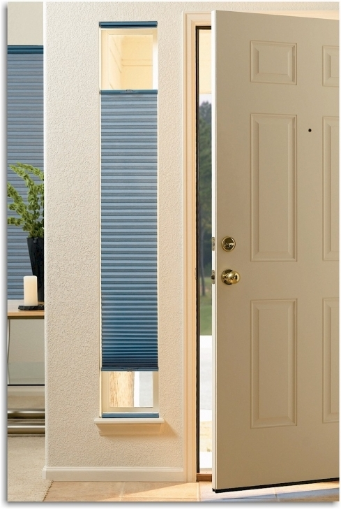 Classy Sidelight Blinds Hunter Douglas Duette Shades Cordless Pictures