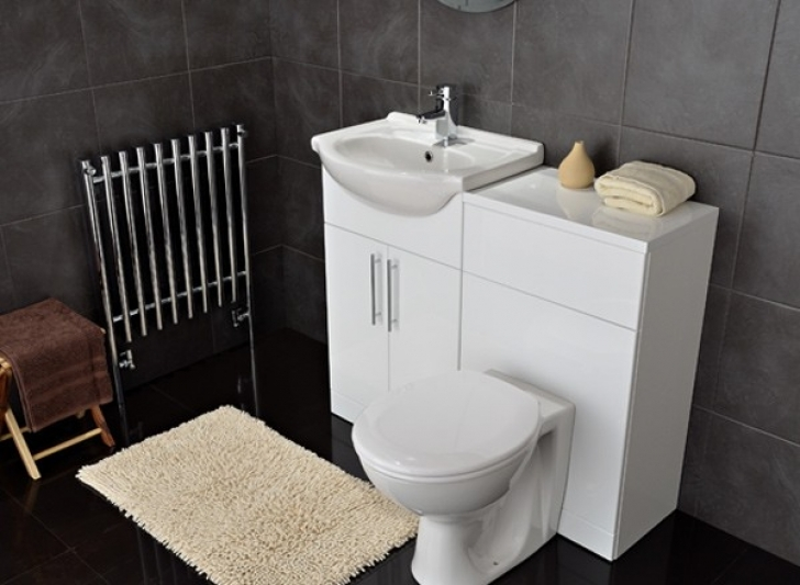 Toilet Sink Combo Inside Bathroom Furniture Photos