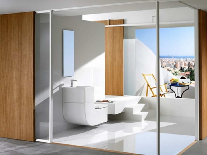 Toilet Sink Combo With Glass Wall  Pic