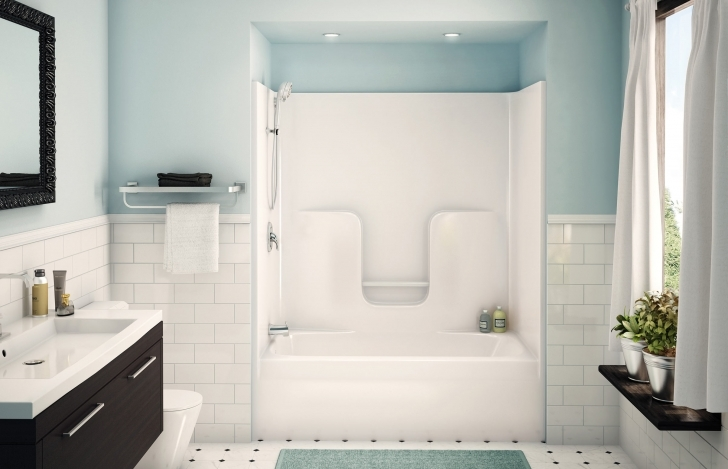 Walk In Tubs And Showers Inside Shower Tub Of Bathroom Design Ideas Pics