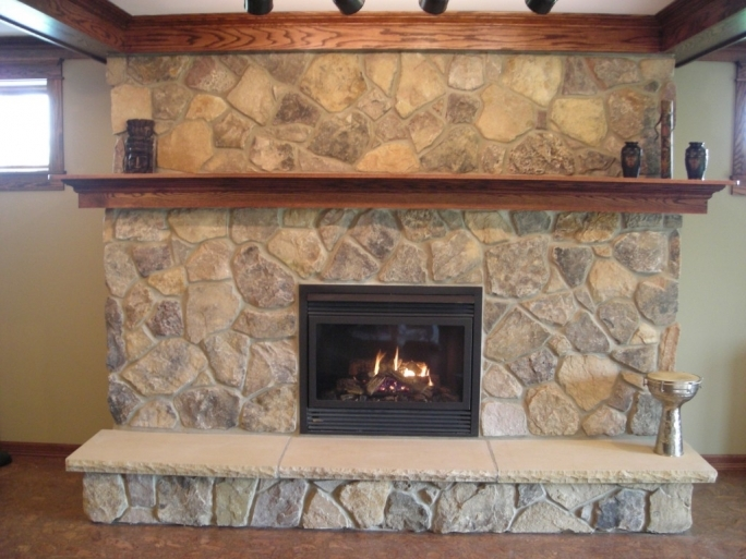 Pleasant Hearth Fireplace Doors Home Design Interior
