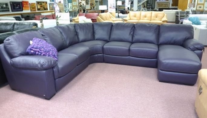 Natuzzi Leather Sofa Purple B626 Photo