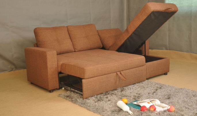 Pull Out Couch Bed Decoration Pull Out Sofa Bed Ideas Photos