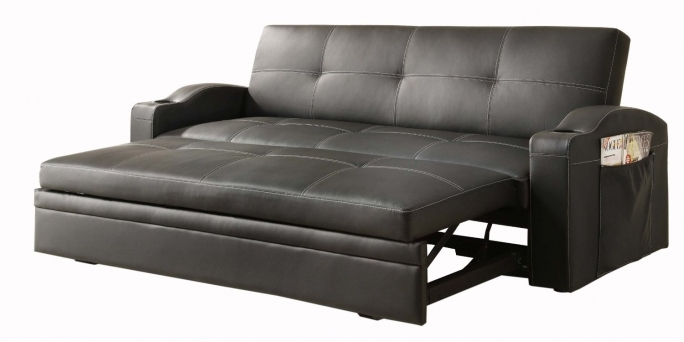 Pull Out Couch Bed Selection Pictures