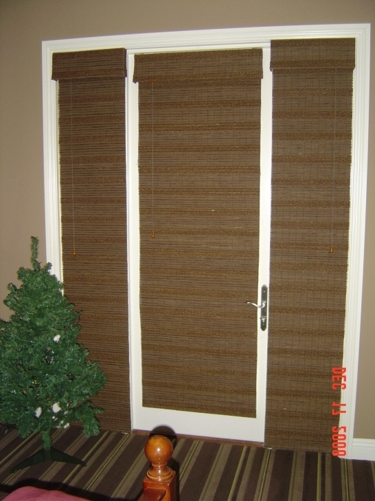 Beautiful Sidelight Blinds And Woven Woods On Doors Images