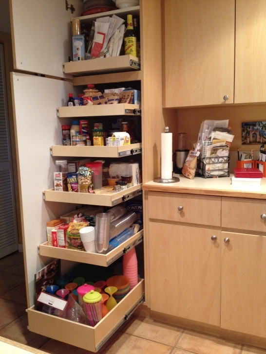 Kitchen Pantry Cabinet Ideas In Furniture With Kitchen Pull Out Image