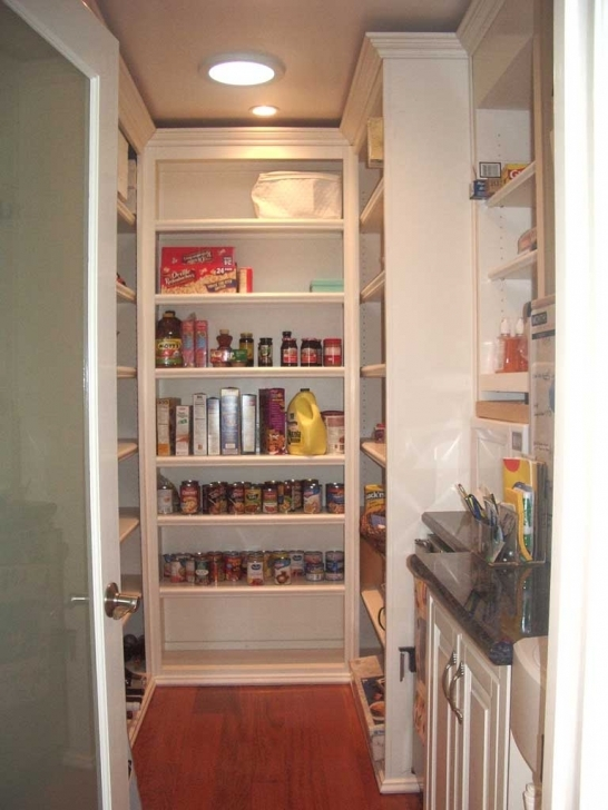 Kitchen Pantry Cabinet Ideas In Practical Kitchen Storage Pantry Cabinet Pics