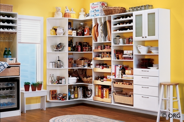 Kitchen Pantry Cabinet Ideas Throughout Build Kitchen Pantry Cabinets Decoration Photos