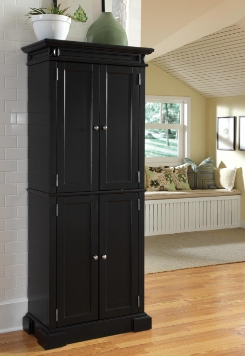 Kitchen Pantry Cabinet Ideas With Regard To Black Colors Photo