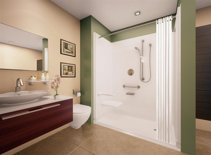 Walk In Tubs And Showers In Elite Satin Roll In Shower Pictures