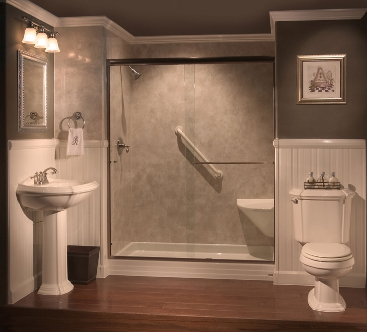 Walk In Tubs And Showers Inside Bathtub Shower Conversion Ideas Picture