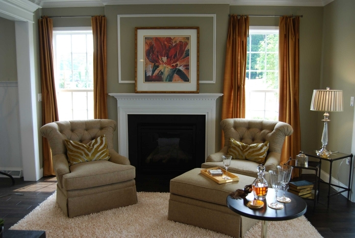 Living Room Paint Ideas With Great Living Room Lovable Gray Color Schemes 427