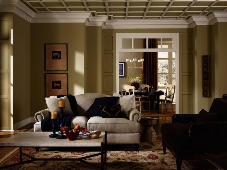 Rustic Living Room Paint Colors Green Wall With Black And White Soga On Rug Area Photos