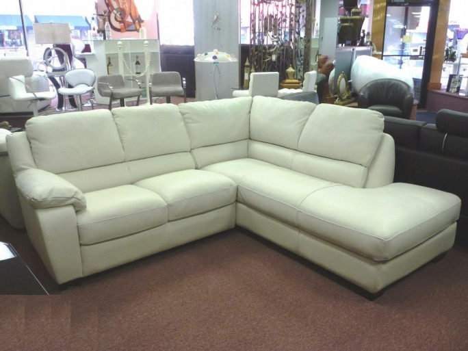 Natuzzi Leather Sofa Chair White Ideas Photos
